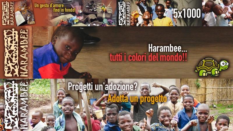 adotta un progetto con harambee